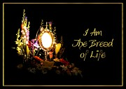 Rose Santuci-Sofranko - I AM The Bread of Life
