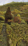 Wine Vineyard Paintings - I filari in autunno by Guido Borelli