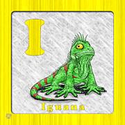 Abc Drawings - I for Iguana by Jason Meents