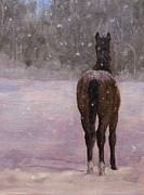 Foal Paintings - I Hear You Calling by Linda Shantz