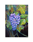 California Vineyard Paintings - I heard it thru the Grapevine by Gregory Peters