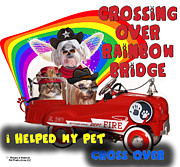 Pet Loss Posters - I Helped My Pet Cross Rainbow Bridge Poster by Kathy Tarochione