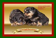 Puppies Digital Art - I Know Where Shes Hidden The Presents Rottweiler Puppy Christmas Wishes  by Tracey Harrington-Simpson