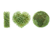 Watercress Art - I love Earth by Roman Milert