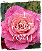 I Feel Prints - I Love You - Pink Rose - Greetings Print by Barbara Griffin