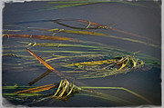 Odd Jeppesen - I Paint You A River