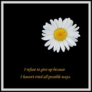 Affirmation Digital Art Posters - I Refuse To Give Up Poster by Barbara Griffin