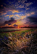 Phil Koch - I want to Dance to the...