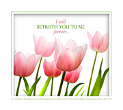 Betrothed Framed Prints - I Will Betroth You Framed Print by Shevon Johnson