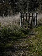 Odd Jeppesen - I Will Wait For You