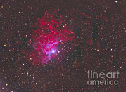 Aurigae Prints - Ic 405, The Flaming Star Nebula Print by Reinhold Wittich