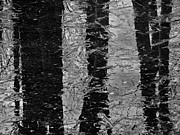 Karol  Livote - Ice Abstract