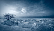 Lake Art - Ice Blue by Everet Regal