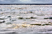 Jenny Ellen Photography - Ice Chunks Holland...