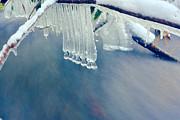 Ice Drops Over Stream Print by Dan Friend