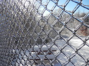 Pema Hou - Ice Fence