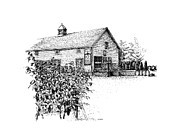 Vineyard Landscape Drawings Prints - Ice House Winery Print by Steve Knapp