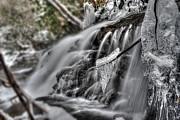 Ice On A Stick Print by Dan Friend