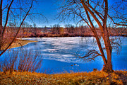 Cooley Lake Prints - Ice on Eaglewatch Lake Print by David Patterson