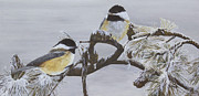 Pine Cones Paintings - Ice Storm Chickadees by Johanna Lerwick