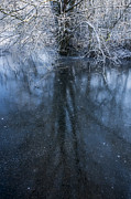 Snowy Stream Prints - Iced Mirror Print by Svetlana Sewell