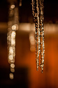 Icicles Prints - Icicles Print by Aaron Aldrich