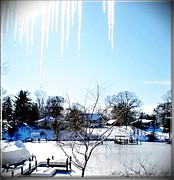 Snow-covered Landscape Digital Art Posters - Icicles In MD USA Poster by Danielle  Parent