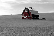 Airbrush Photos - Icon of the Palouse by Sharon Elliott