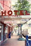 St Charles Avenue Photos - Iconic Landmark Humming Bird Hotel And Grill In New Orelans Louisiana by Michael Hoard