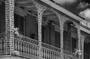 Shutters Photos - Iconic New Orleans wrought iron balcony by Christine Till