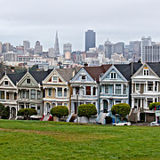 Painted Ladies Posters - Iconic Painted Ladies Poster by Art Blocks