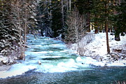 Pacific Northwest Rivers Prints - Icy Blue River Print by Carol Groenen
