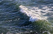 Michael Mooney - Icy Cold Ocean Water