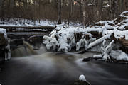 Woodland Scene Prints - Icy Waters Print by Andrew Pacheco