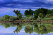 Wacom Tablet Prints - Idaho Snake River Reflection Print by Paddrick Mackin