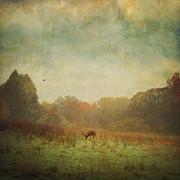 Idyllic Painterly Fall Morning Print by Dirk Wuestenhagen