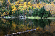 Lovely Pond Prints - Idyllic Vermont Autumn Glory Print by Juergen Roth