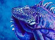 Caribbean Sea Paintings - Iguana Study II by Paulene Edwards