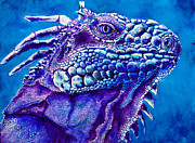 Caribbean Sea Paintings - Iguana Study III by Paulene Edwards