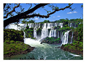 Minchak Framed Prints - Iguazu Falls in Argentina Framed Print by Joan  Minchak