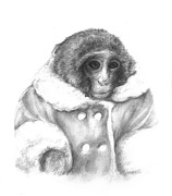 Primate Drawings - Ikea monkey  by Meagan  Visser