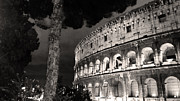 Structure Originals - Il Colosseo Nocturne by William Fields