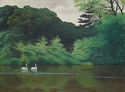Swans... Framed Prints - Ille du Lac Saint James Framed Print by Felix Edouard Vallotton