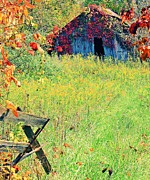 Rural Indiana Mixed Media Prints - Illinois Backroads Print by Virginia Folkman