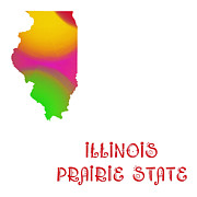 Illinois Digital Art Framed Prints - Illinois State Map Collection 2 Framed Print by Andee Photography