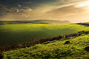 Warm Summer Photo Prints - Illuminated Evening Landscape North Devon Print by Dorit Fuhg