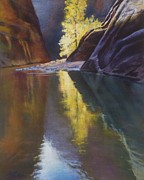 Zion National Park Pastels - Illuminated by Marjie EakinPetty