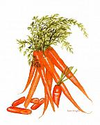Nan Wright Prints - Illustration of Carrots Print by Nan Wright