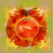 Featured Metal Prints - Illustration Of Tomato Metal Print by Cam Wilson