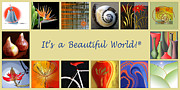 Bird Of Paradise Prints - Image Mosaic - Promotional Collage Print by Ben and Raisa Gertsberg